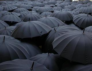 UmbrellaLandscape