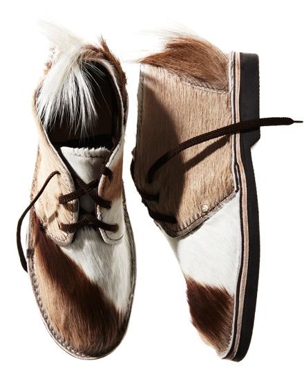 Schier-Shoes_Erongo_springbok